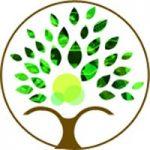 mybusinesstree-icon-3-seo